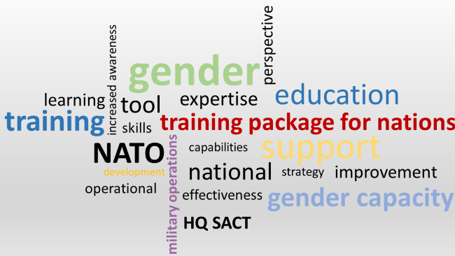 gender advisor wordcloud